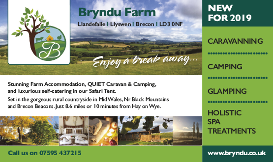 Bryndu Farm Camping and Glamping